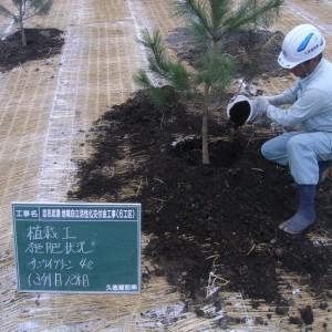 志布志港地域自立・活性化交付金工事(6工区)