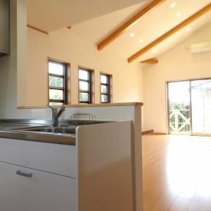 勾配天井と広々テラスのお家